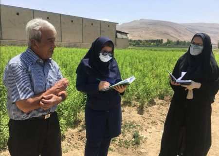آغاز طرح نسخه نویسی گیاه پزشکی در شیراز