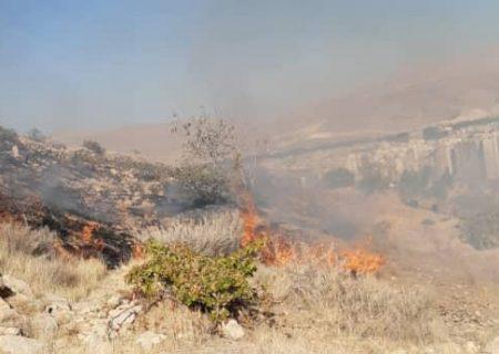 آتش سوزی در عرصههای دراک مهار شد