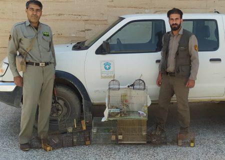 هفته پرکار محیط زیست شهرستان سپیدان با دستگیری سه نفر متخلف