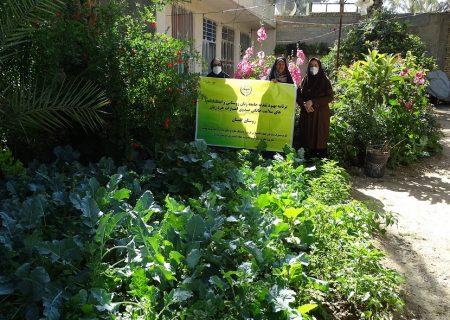 اجرای طرح بهبود تغذیه زنان روستایی و ایجاد باغچه های خانگی در کازرون